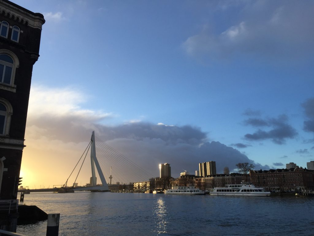 Rotterdam 16