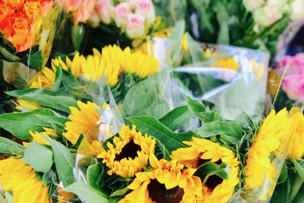 Blomster St Hanshaugen