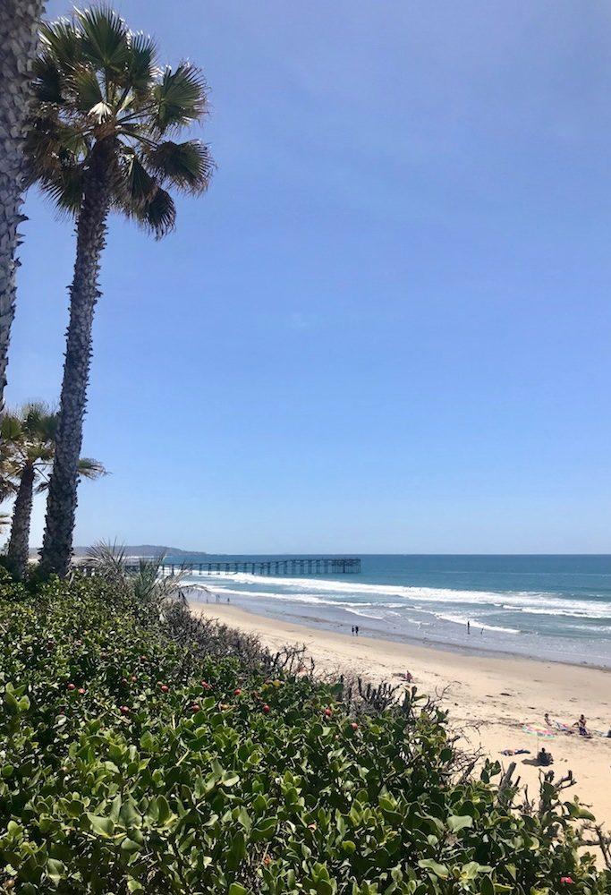 San Diego 22