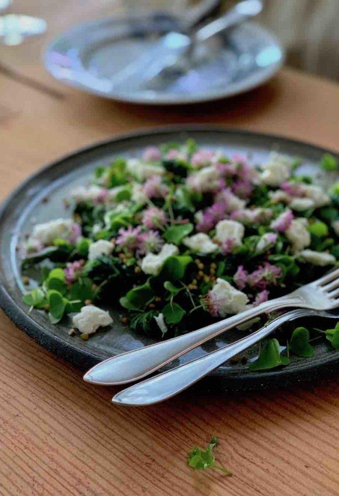 Mye av det vi fikk servert, hadde blitt plukket kun timer før servering. Her er en salat med brennesle, kløver, syre, bokhvete og lokal geitost.